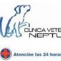 Logo empresa: clinica veterinaria neptuno