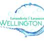 Logo empresa: lavanderia wellington