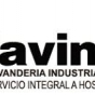 Logo empresa: lavinur