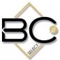 Logo empresa: bc select (vitacura)