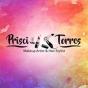 Logo empresa: prisci torres, estilista y esteticista integral
