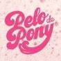 Logo empresa: pelo de pony