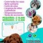 Logo empresa: huellitas peluquería canina