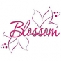 Logo empresa: blossom babies