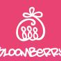 Logo empresa: bloomberry chile alimentos especiales