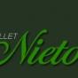 Logo empresa: academia de ballet sara nieto