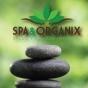 Logo empresa: spa & organix