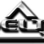 Logo empresa: delta seguridad