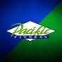 Logo empresa: gimnasio pacific (maipu)