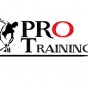 Logo empresa: pro training