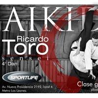 Logo empresa: aikido sportlife