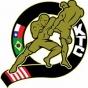 Logo empresa: kombat training club
