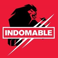 Logo empresa: indomable