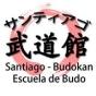 Logo empresa: santiago budokan