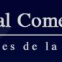 Logo empresa: industrial comercial chile (quilicura)